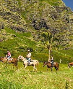 Kualoa Ranch Two Hour Horseback Riding