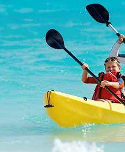 Guided Kayaking Excursion