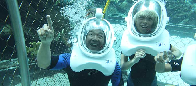 Sea Life Park Shark Trek Adventure