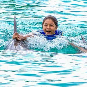 Sea Life Park Dolphin Royal Swim Adventure