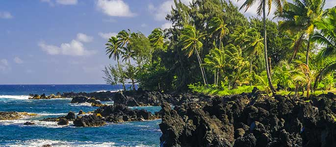 Oahu and maui islands tour 2 islands all inclusive package for Hawaii home packages