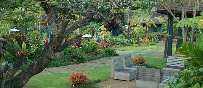 Maui Sacred Full Moon Yoga Retreat Discover Hawaii Tours